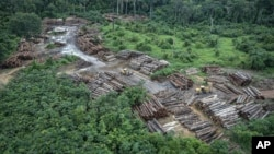 This May 8, 2018 photo released by the Brazilian Environmental and Renewable Natural Resources Institute (Ibama) shows an illegally deforested area on Pirititi indigenous lands as Ibama agents inspect Roraima state in Brazil's Amazon basin. (Felipe Wernec