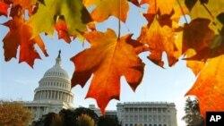 Конгресни избори во САД - кој ќе го добие мнозинството?