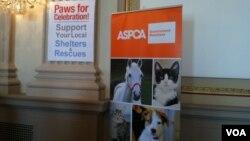 国会为无家可归动物举办活动