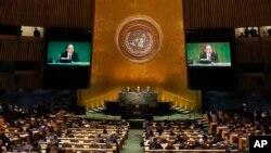 Ujedinjene nacije