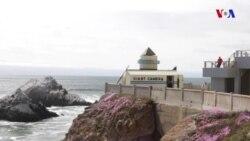Sakit Okean sahillərində böyük kamera