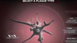 Игра с Эболой