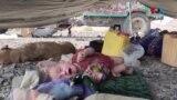 له افغانستانه تر پنجابه د تلونکو کوچي ماشومانو د پولیو وېکسین څنګه کېږي؟