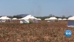 Nampula monta tendas para receber deslocados de Cabo Delgado