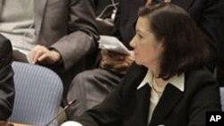 Maria Luiza Ribeiro Viotti, diplomata brasileira