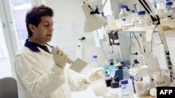 Le chercheur Hamid Darban travaille à l'Institut Karolinska de Stockholm sur un nouveau vaccin contre des parasites mortels causant la maladie du sommeil, la maladie de Chagas et Leishmania, le 15 juillet 2005.