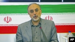 Iranian Foreign Minister Ali Akbar Salehi speaks with ambassadors during a session in Tehran, July 10, 2011 (file photo)
