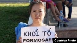 Trước khi bị bắt, blogger Mẹ Nấm đã nhiều lần xuống đường phản đối công ty Formosa Hà Tĩnh và kêu gọi nhà nước minh bạch.