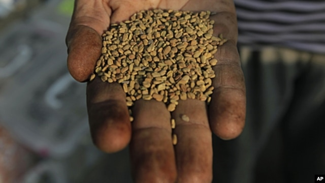 An Egyptian spice dealer displays fenugreek seeds at his shop in Cairo, Egypt, June 30, 2011