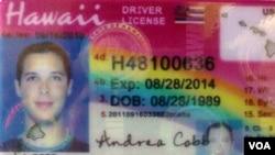 中国制造的山寨美国驾驶执照(ID Chief 网站)
