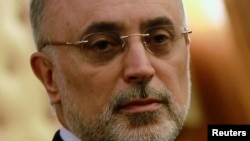 FILE - Ali Akbar Salehi, head of Iran's atomic energy organization