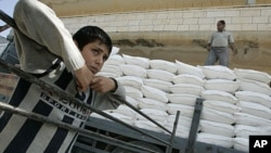 A Palestinian boy stands beside a truck loaded with sacks of flour received from The United States Agency for International Development (USAID) in the village of Anin near the West Bank city of Jenin (file photo)
