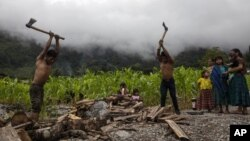 Eduardo Cal Chen, 23, left, and his 20-year-old brother Edgar, chop wood in the makeshift settlement Nuevo Queja, Guatemala, Sunday, July 11, 2021. (AP Photo/Rodrigo Abd)