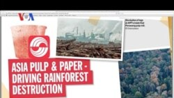 Menhut RI Zulkifli Hasan dan Tuduhan Perusakan Hutan - Liputan Berita VOA