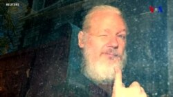 """ABŞ Culian Assanjın ekstradisiyasının sürətləndirmək istəyir, Tramp isə """"WikiLeaks"""" barədə heç nə bilmədiyini bildirir"""