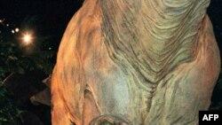 Динозавры. Кадр из фильма «Парк Юрского периода» Стивена Спилберга