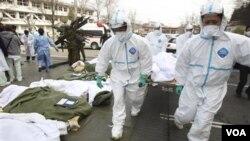 Tim penyelamat yang menggunakan pakaian anti-radiasi menggotong korban. Jumlah korban akibat gempa dan tsunami di Jepang diperkirakan mencapai lebih dari 10.000