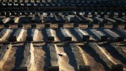 جمع آوری اجساد کشته شدگان ده ماه خشونت و جنگ در ليبی