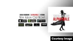 البوم الفا میل، موسیقی ساخته شجاع ربانی