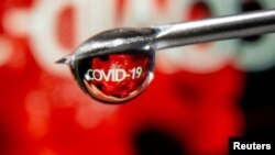 """FILE - """"COVID-19"""" is reflected in a drop on a syringe needle in this illustration taken Nov. 9, 2020."""