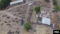 En images : trafic de bois à la frontière sénégalo-gambienne