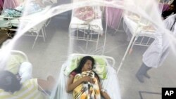 Enclosed in a mosquito net, Nadia Gonzalez recovers from a bout of dengue fever at a hospital in Luque, Paraguay, Feb. 5, 2016. Dengue, like the Zika virus, is transmitted by the same vector, the Aedes aegypti mosquito.