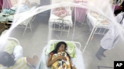 Захищена сіткою від комарів вагітна Надя Гонсалес одужує від лихоманки. Парагвай, 5 лютого 2016 рік.