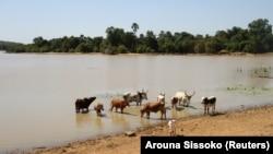 Le Sahel subit de plein fouet les effets du changement climatique