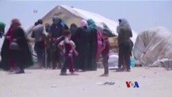 Fallujah ၿမိဳ႕နဲ႔ စြန္႔ခြာထြက္ေျပးသူမ်ား