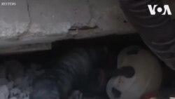 Cứu người bị mắc kẹt ra khỏi đống đổ nát ở Syria