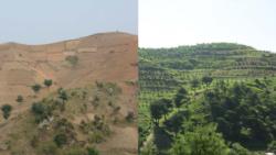 [생생 라디오 매거진] 유엔 북한 산림복구 지원, 미 학생들 탈북자 돕기 성탄카드 제작