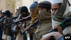 افغان چارواکي وايي تېر کال په زرګونو وسله وال طالبان ووژل شول