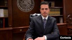 Otras organizaciones internacionales como la ONU, apoyarán la investigación, según la Procuraduría General de la República mexicana.