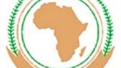 Dura taa'aa gamtaa Afriikaa haaraa filachuun Ajandaa gumii gamtichaa ta'uuf jira.