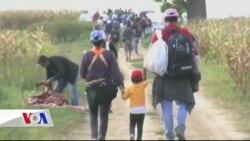 İngiltere'den Refakatçisiz Çocuk Mültecilere Onay