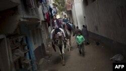 Иностранные туристы в Гизе. Египет. 31 января 2011 года