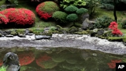 Colorful leaves are reflected in a pool of water at the Portland Japanese Garden in Portland, Oregon