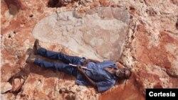 La pisada fue encontrada en un yacimiento de Australia y es tan grande como la altura de un ser humano adulto.