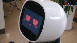 Robotlar Ne Zaman İnsanlarla Beraber Çalışmaya Başlayacak?