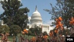 美國國會(視頻截圖)