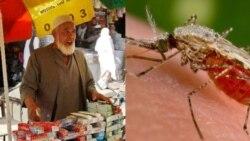 Mali: Soumaya bana keli damina Mali djamana fan be, Youwarou be ouw ta baaraw gnefo. Gordo Bocoum