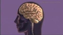 Борьба с Альцгеймером: старт до диагноза