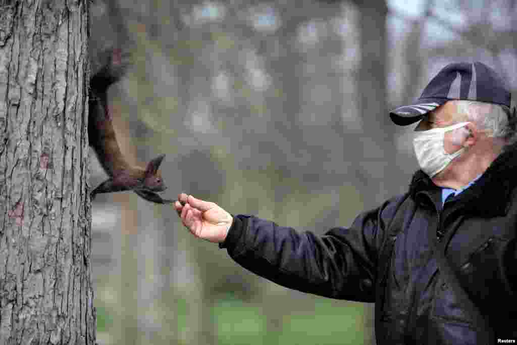 A park security guard wearing a protective face mask feeds a squirrel, following restrictions on access to city parks in an attempt to prevent the spread of coronavirus outbreak in Sofia, Bulgaria.