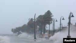 颶風艾瑪帶來的大浪沖擊波多黎各的海塘 (2017年9月6日)