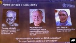 Ganadores del Premio Nobel de Química 2015.