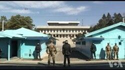La zone démilitarisée séparant les deux Corées (vidéo)