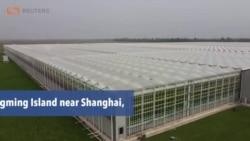 Coronavirus Crisis Creates Changes in China's Food Supply Chain