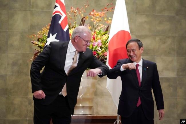 日本首相菅义伟(右)和澳大利亚总理莫里森(左)在东京举行会晤。(2020年11月17日)