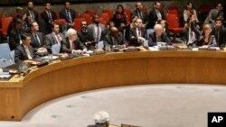 美國常駐聯合國代表鮑威爾(右)投下否決票。