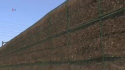 Велика стіна з щепки захищає місто від автотраси